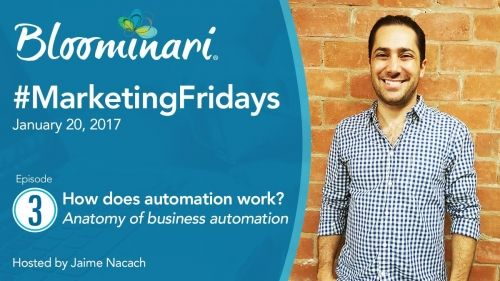 How Does Online Business Automation Work [Anatomy of Automation]. Ep 3