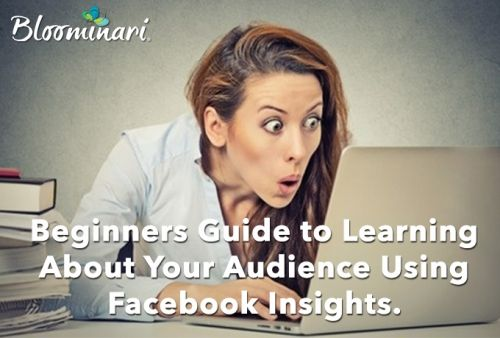 Beginners Guide to Learning About Your Audience Using Facebook Insights